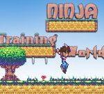 Ninja Training Worlds