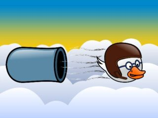 Cannon Duck
