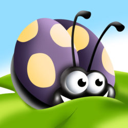 Berry Bug